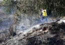 1.890 hectáreas de cobertura vegetal han sido consumidas por el fuego en el Huila este año.