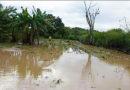 Inundadas 150 hectáreas de cultivos en Villavieja por lluvias.
