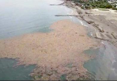 Huilenses, posibles responsables de la basura que ha formado una 'isla' en Puerto Colombia
