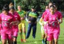 """Se cobrará la entrada al """"Plazas Alcid"""" para ver la Liga Femenina 2019"""