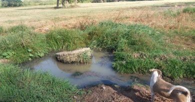 Aguas negras ponen en riesgo a habitantes del barrio El Dorado de Neiva