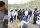 Huilense investiga especies de árboles para la restauración del Bosque Seco Tropical