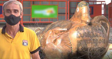 Ceiba caída se convirtió en escultura local