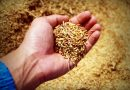 Gobernador gestiona 6 mil millones para proyectos agroindustriales