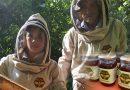 ApiGranja, un dulce emprendimiento familiar en Paicol